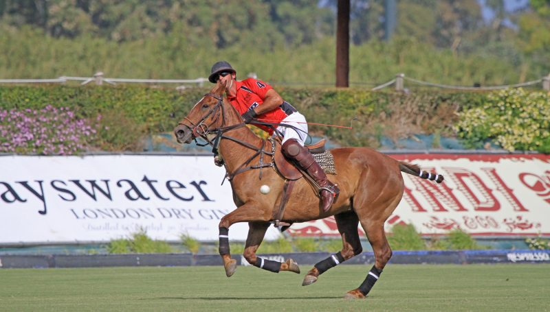 Polo in Sotogrande